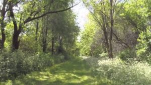 stengel trail